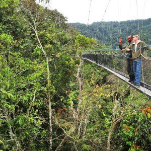 Exploring Rwanda's Parks